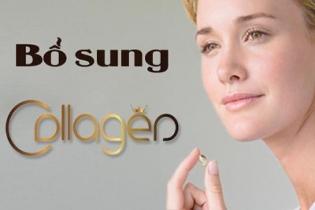Collagen và vai trò của collagen